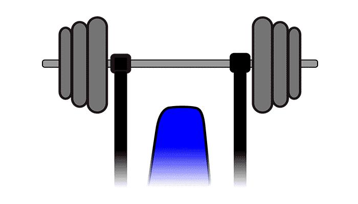 bases del entrenamiento