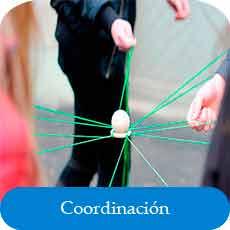 coordinación segmentaria