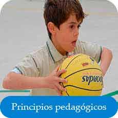 principios de la educación física